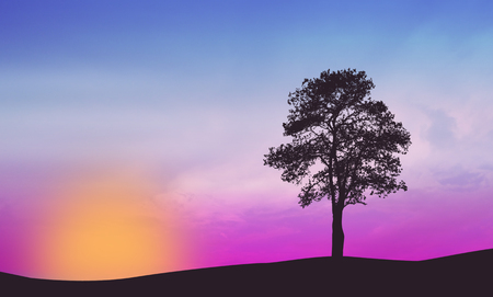 lone: A lone tree on beautiful sunset, vector illustration
