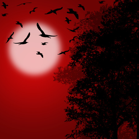 red sunset: Beautiful forest trees with flying birds on red sunset, vector illustration Illustration