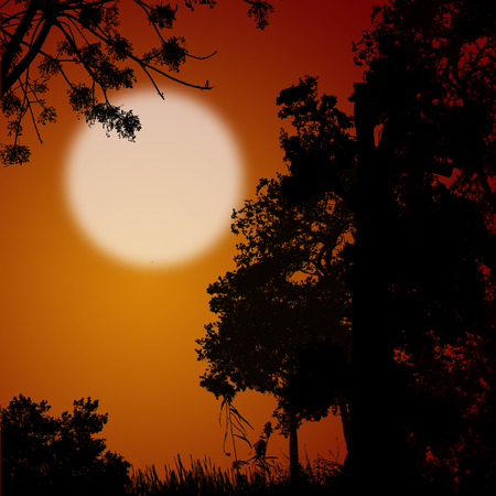 orange sunset: Beautiful forest trees silhouette on orange sunset, vector illustration