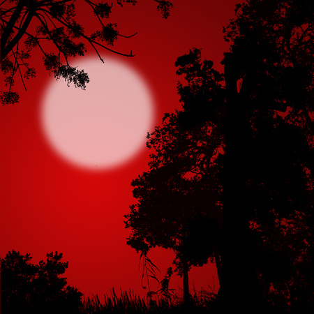 red sunset: Beautiful forest trees silhouette on red sunset, vector illustration