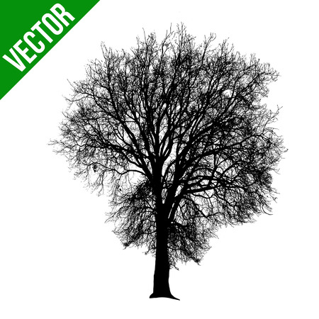 Morto albero silhouette su sfondo bianco, illustrazione vettoriale