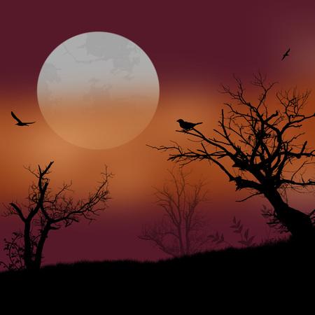 Sunset landscape vector: cây khô trong cảnh quan đẹp trên hoàng hôn, minh họa vector