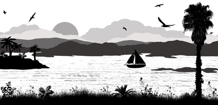 coast: Sunset on beautiful tropical seascape. Sunset on the ocean background on black and white, vector illustration