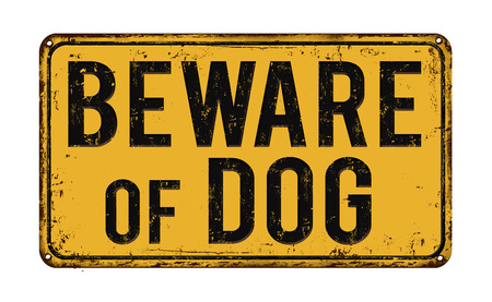 yellow beware: Beware of dog on yellow vintage rusty metal sign on a white background, vector illustration Illustration
