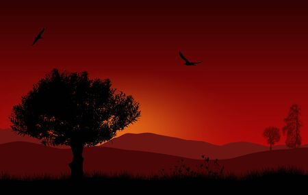 solitary: Beautiful landscape with tree in the red morning sunrise