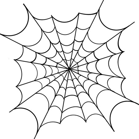 Spiderweb op een witte achtergrond
