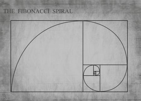 fibonacci: The Fibonacci spiral (also known as the Golden Spiral) on grey retro style background