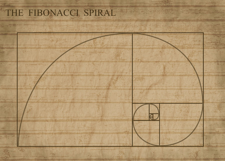 harmony nature: The Fibonacci spiral (also known as the Golden Spiral) on sepia retro style background