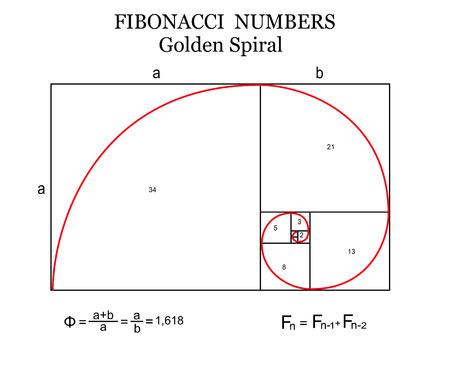 La espiral de Fibonacci (también conocida como la espiral de oro) con fórmulas básicas sobre fondo blanco