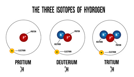 HIDROGENO: Los tres isótopos del hidrógeno diagrama (útiles para la educación) - ilustración vectorial