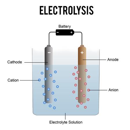 전기 분해 과정 (학교에서 교육에 유용) - 벡터 일러스트 레이션