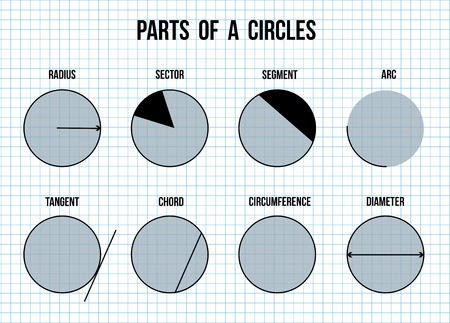 math paper: Parts of a circles on math paper texture background (Helpful for basic Education & Schools), vector illustration