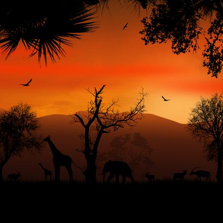 Salvajes africanos animales siluetas en hermosa puesta de sol, ilustración vectorial