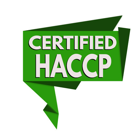 HACCP (Hazard Analysis Critical Control Points) origami speech bubble on white background, vector illustration