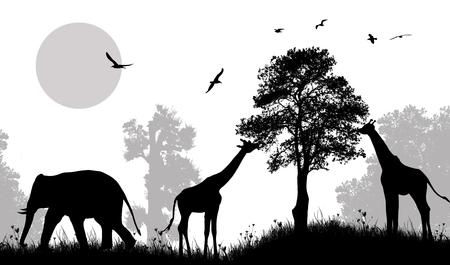 Safari wild animals silhouette on black and white, vector illustration.