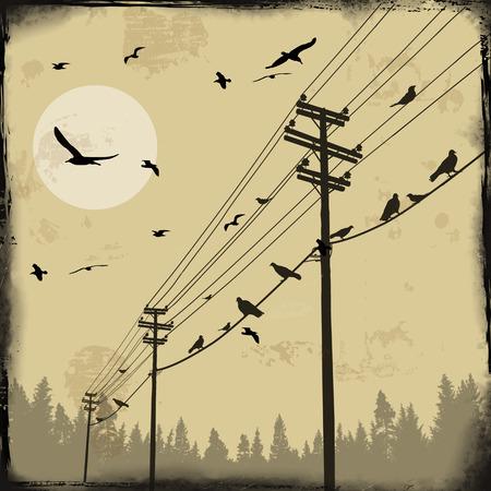 Postes de electricidad con pájaros en el alambre en el fondo del grunge retro, ilustración vectorial