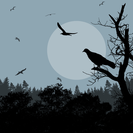 park: Bird on branch on blue evening against beautiful forest, vector illustration Illustration