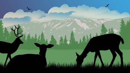 Deers on wild nature landscape, vector illustration Illustration