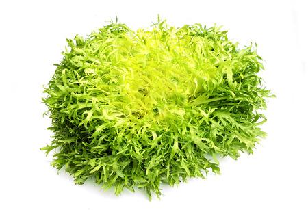 Escarole endive frisee lettuce on white background Stock Photo