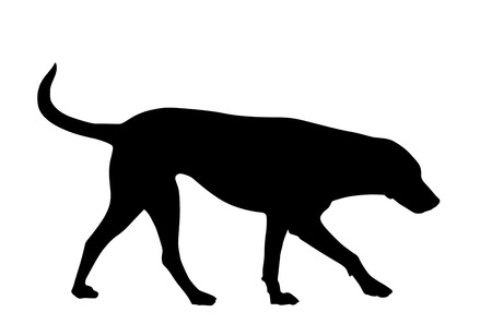 Silhouette of a dog on a white background, vector illustration