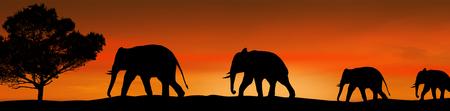 Elephants silhouette and tree in the savannah on beautiful on sunset, vector illustration 向量圖像