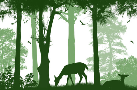 Forest wildlife poster. Deers silhouettes on white background, vector illustration