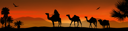 Camel caravan going through the desert on beautiful on sunset, vector illustration Vectores
