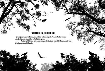 Pájaros en el árbol y volando sobre fondo blanco, ilustración vectorial