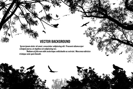 Birds in the tree and flying on white background, vector illustration