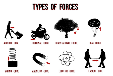 Types of forces chart, vector illustration ( for basic education and Schools )