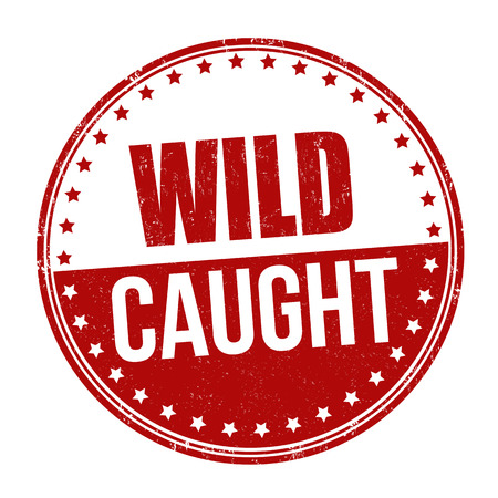 Wild caught sign or stamp on white background, vector illustration
