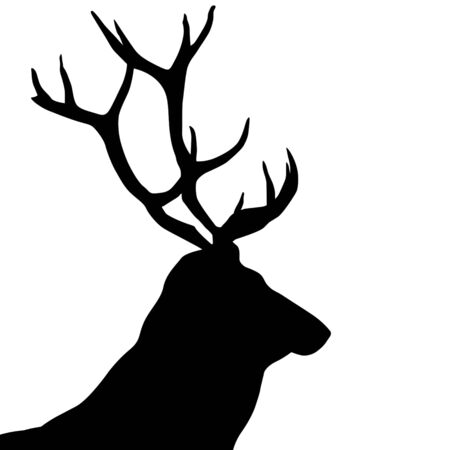 Black silhouette of a deer head and antlers on white background, vector illustration
