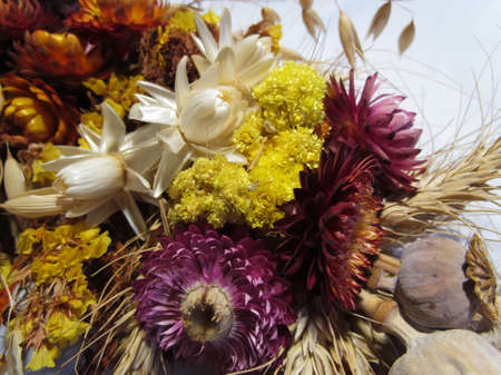 tied in: dried flowers, spikelets, poppy tied in a bouquet for the Savior of the Honey Feast Day