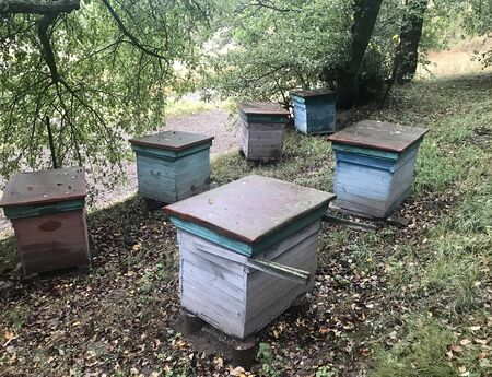 collect: hives for bees in the autumn landscape Stock Photo