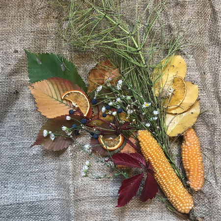 autumn still life with corn and leaves