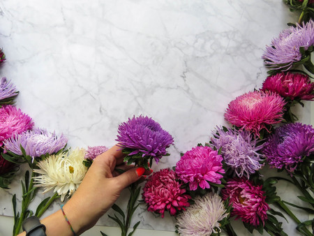 Colorful aster flowers forming a frame on a background, minimal concept, top view, copy space for your text Group Objects