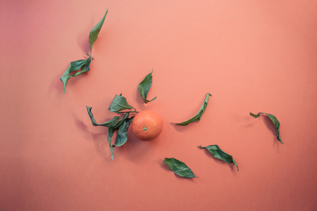 Color Banner 2019 - Live Coral. Mandarin with green leaves. Place for text. Eco concept. Fresh tangerines on color background Color of the year 2019 Living Coral Stok Fotoğraf