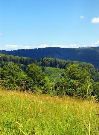 ramble: Carpathian mountain summer landscape with blue sky Stock Photo