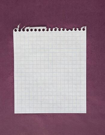 Sheet of white lined paper on the violet background photo