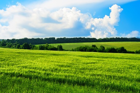 Rural landscape with green hills and blue sky photo