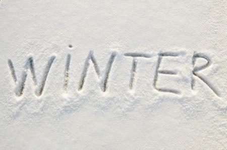 Invierno en la nieve Foto de archivo - 10103608