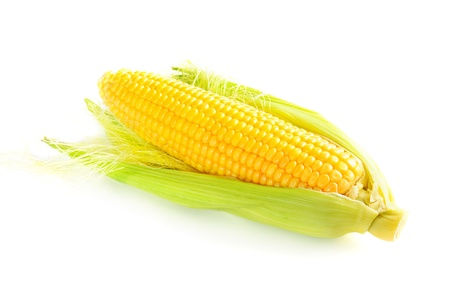 Corn cob Stock Photo - 10201087