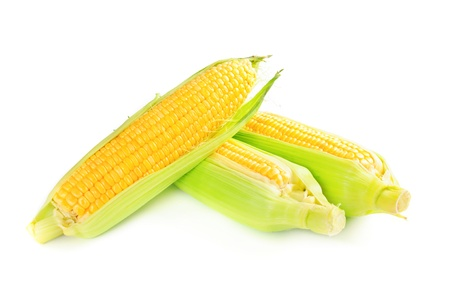 Corn cobs photo