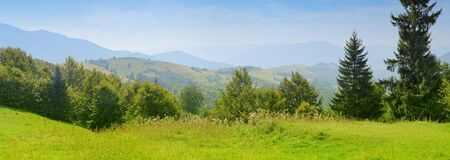 Carpathian mountain photo