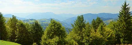 carpathian: Carpathian mountain