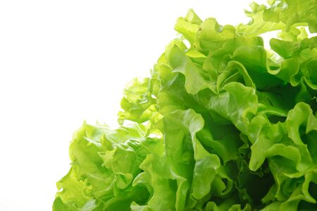 Green salad Stock Photo - 15430218