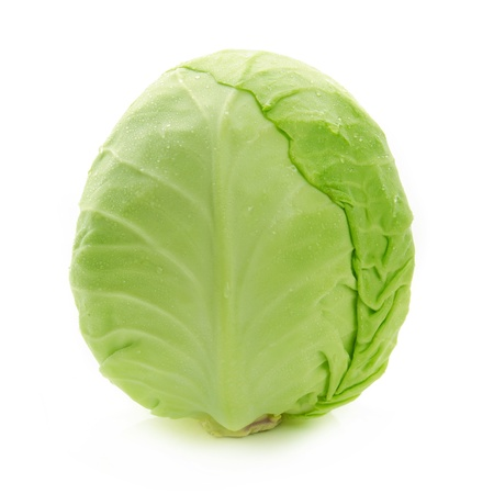 Cabbage isolated photo