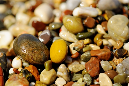 Sea pebble photo