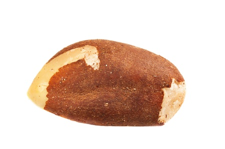 Single Brazil nut isolated on white background, macro image photo