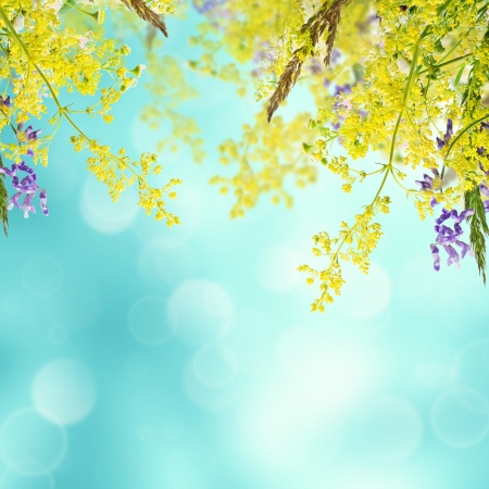 Bouquet of summer meadow flowers  with bokeh and copy space,  floral background Standard-Bild